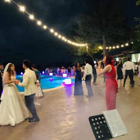 Solista Cover-uri | Solista Muzica Usoara | Sonorizare Nunta Buftea Lake